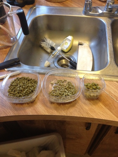 Hop additions separated for an IPA